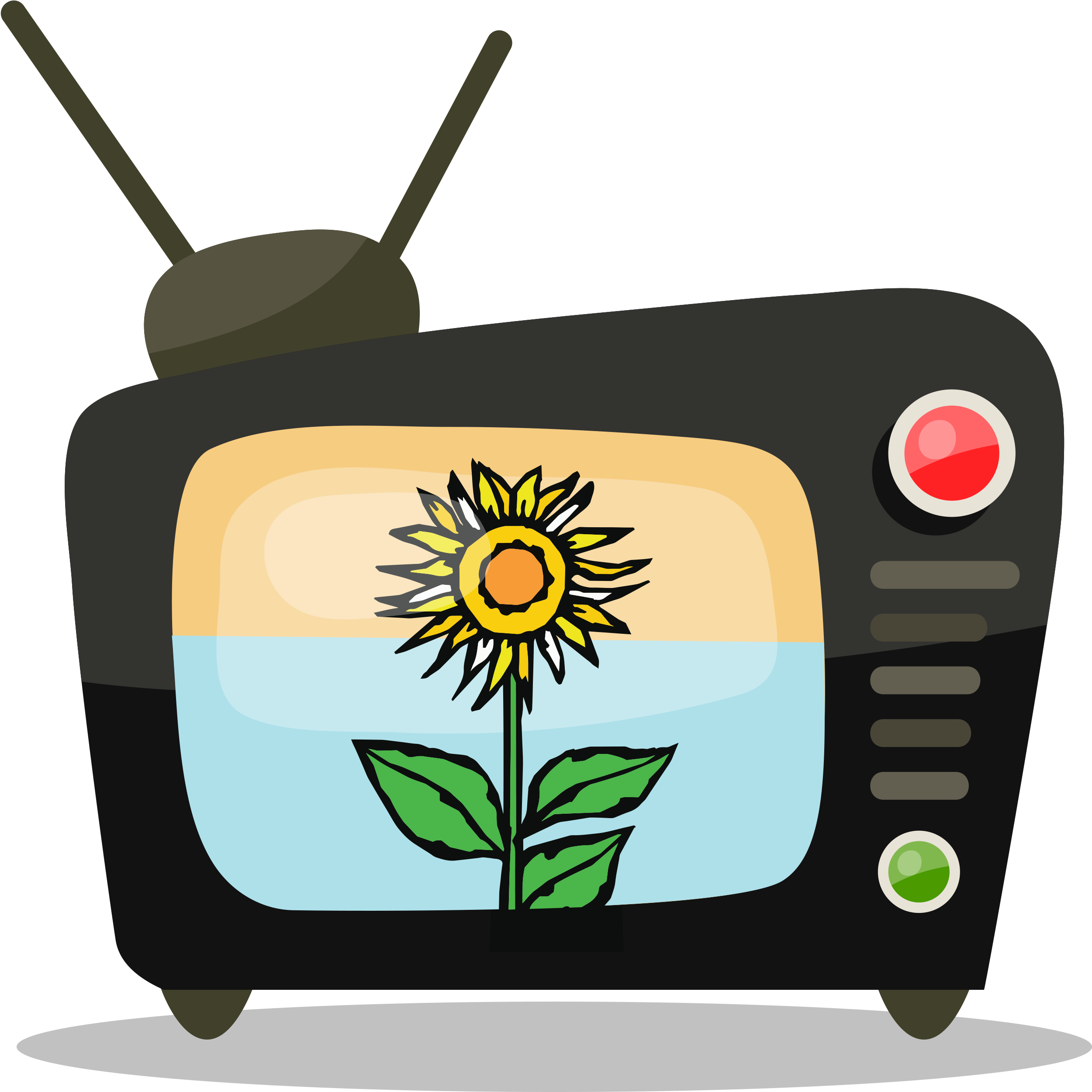 Sunflower Learning Channel